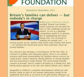 Newsletter November 2012